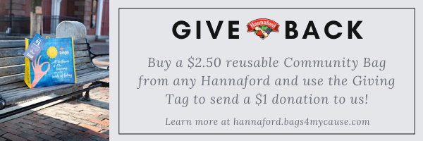 Hannaford GT Email Banner Ad 1 - CB